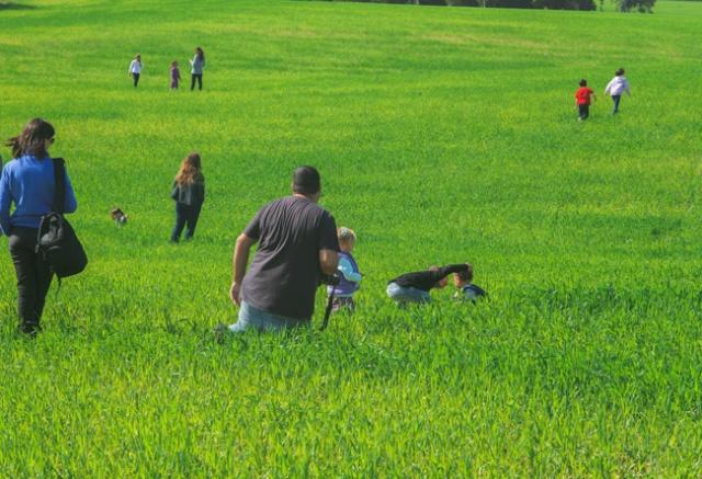 שישי באדום בשדה