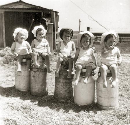 ילדים וכדי חלב