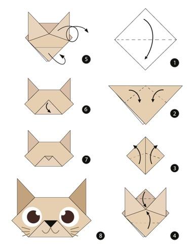 קיפול נייר חתול